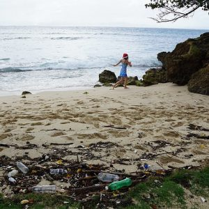 garbage pollution beach 300x300 - garbage-pollution-beach