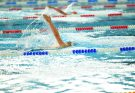 swimming competition 135x93 - Top Upcoming Swimming Competitions in 2020